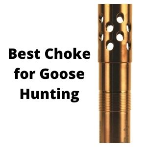 Best Choke for Goose Hunting